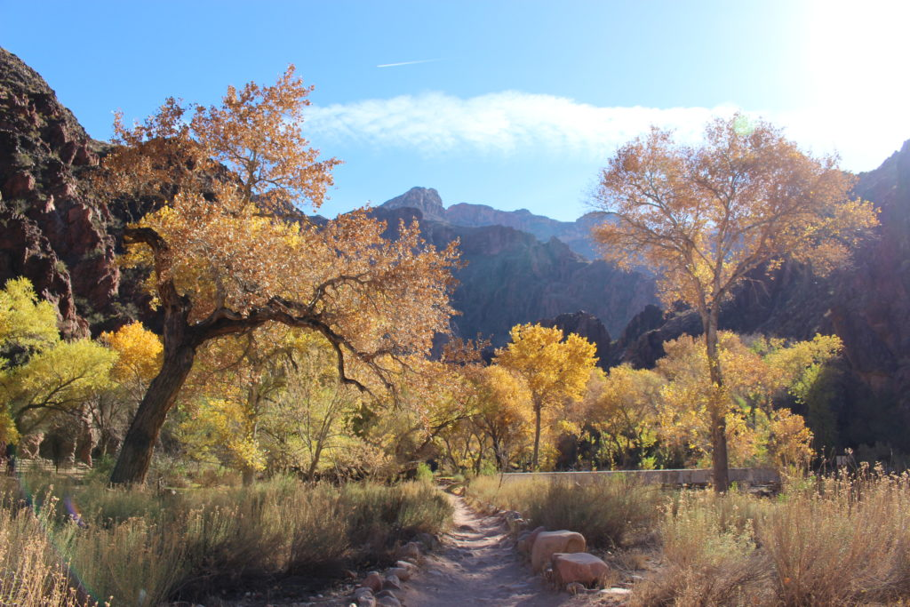 Phantom Ranch Grand Canyon Winter Hiking