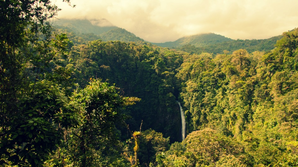 Our Costa Rica Family Vacation Itinerary