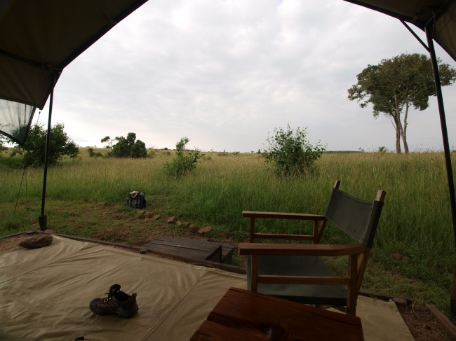 safari camp africa