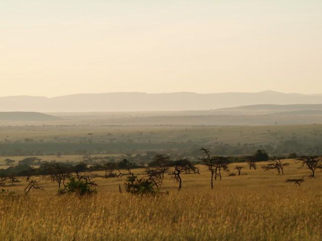 masai mara photo