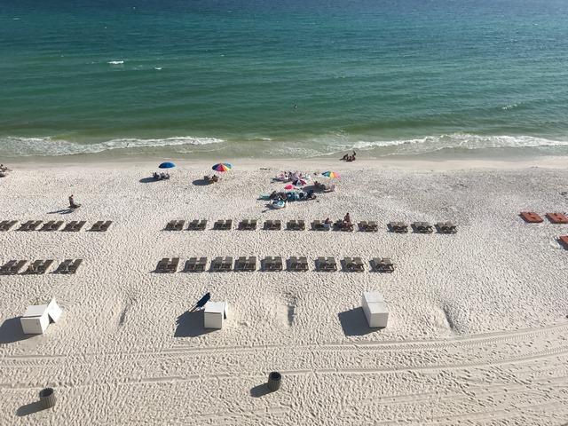 Pass a Grille Beach Tampa Bay Beach