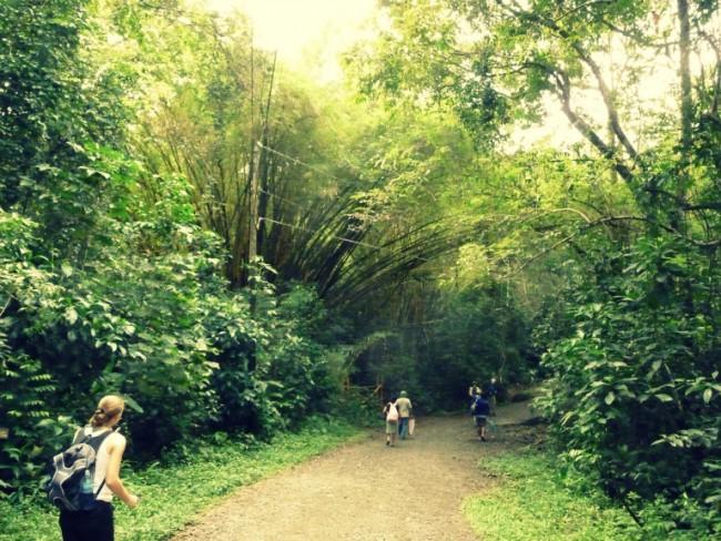 manuel antonio hiking